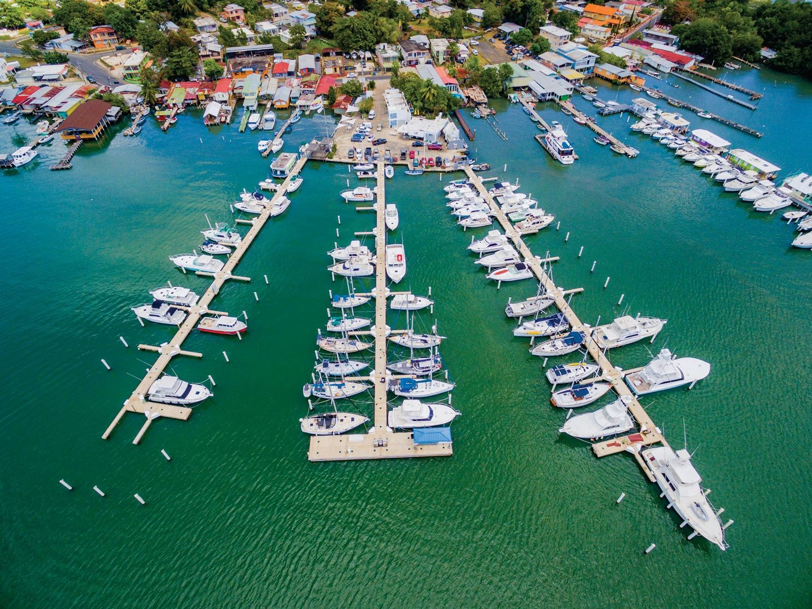 Marina Pescaderia Puerto Real
